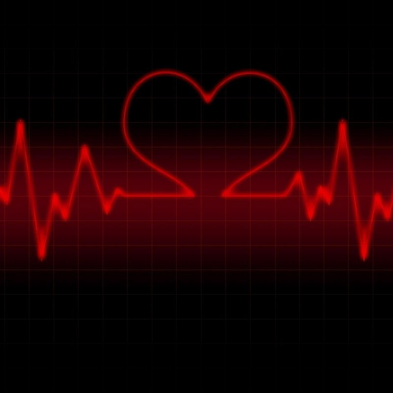 10 Latest Red Heart Black Background FULL HD 1080p For PC Desktop 2020 free download red heart with black backgrounds wallpaper cave 2 800x800