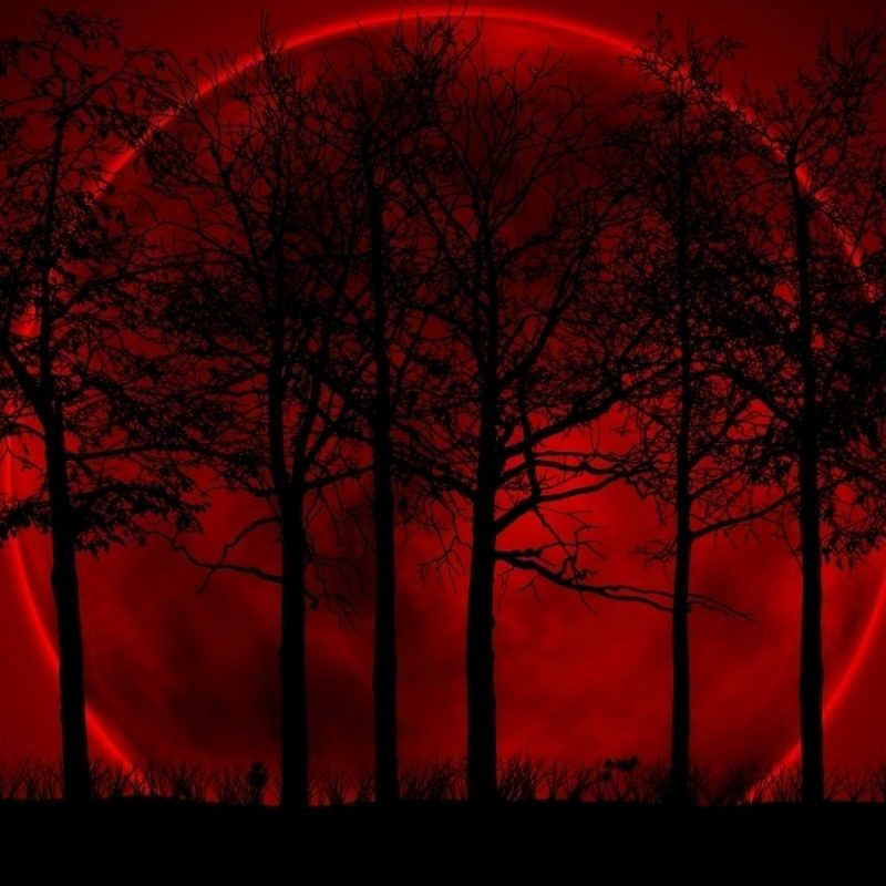 10 Best Red Moon Wallpaper Hd FULL HD 1080p For PC Background 2020 free download red moon wallpapers group with 42 items 800x800
