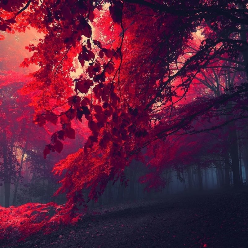 10 New Red Nature Wallpaper Hd FULL HD 1920×1080 For PC Desktop 2018 free download red nature wallpaper 65 images 800x800