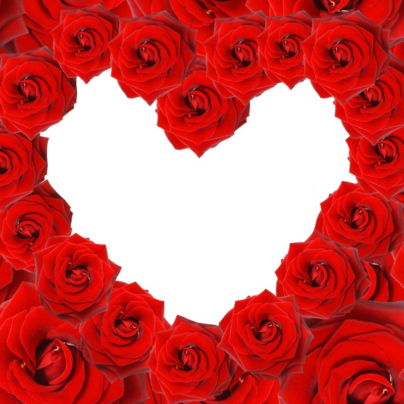 10 Top Roses And Hearts Wallpaper FULL HD 1920×1080 For PC Background 2018 free download red roses love heart wallpapers hd wallpapers id 8639 800x800