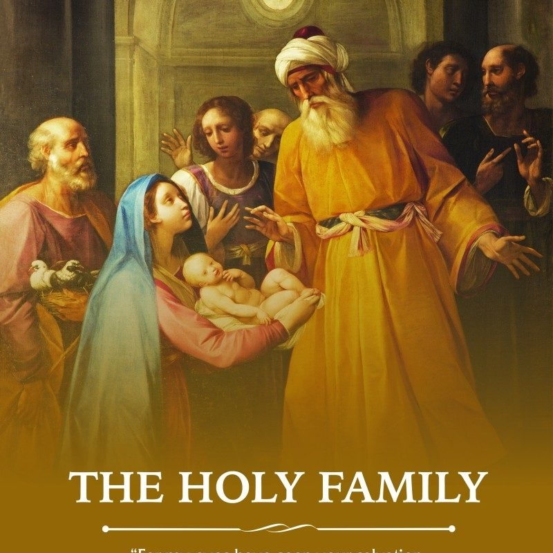 10 Top Images Of The Holy Family FULL HD 1080p For PC Background 2021 free download reflection for the feast of the holy family catholicmom 800x800