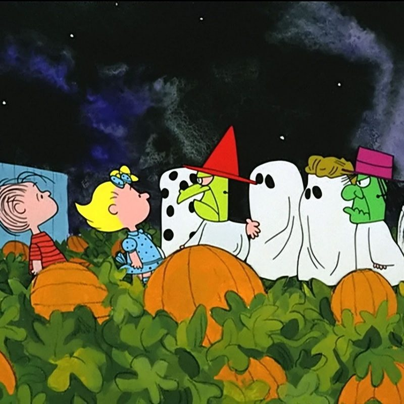 10 New Great Pumpkin Charlie Brown Pictures FULL HD 1920×1080 For PC Background 2021 free download review its the great pumpkin charlie brown rotoscopers 1 800x800