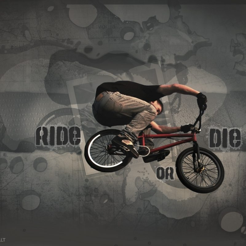 10 Top Ride Or Die Wallpaper FULL HD 1920×1080 For PC Background 2021 free download ride or die wallpaperbloo69 on deviantart 800x800
