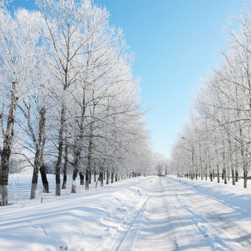 10 Top Beautiful Snow Falling Wallpapers FULL HD 1080p For PC Desktop 2018 free download road covered with snow e29da4 4k hd desktop wallpaper for 4k ultra hd tv 800x800
