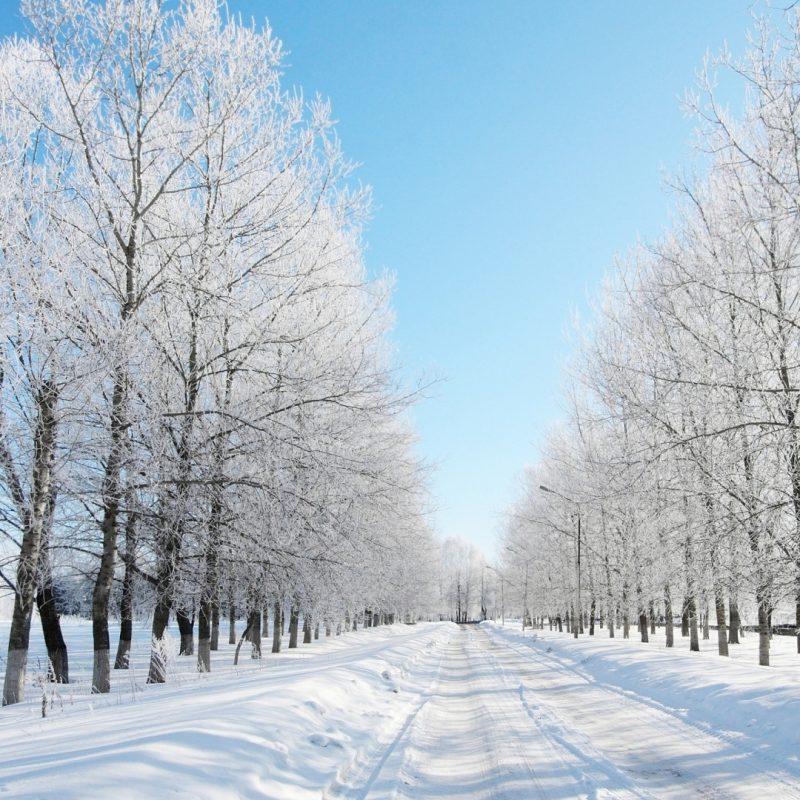 10 New Snow Desktop Wallpaper Hd FULL HD 1080p For PC Desktop 2021 free download road covered with snow wallpaper 1920x1080 10 000 fonds decran hd 800x800