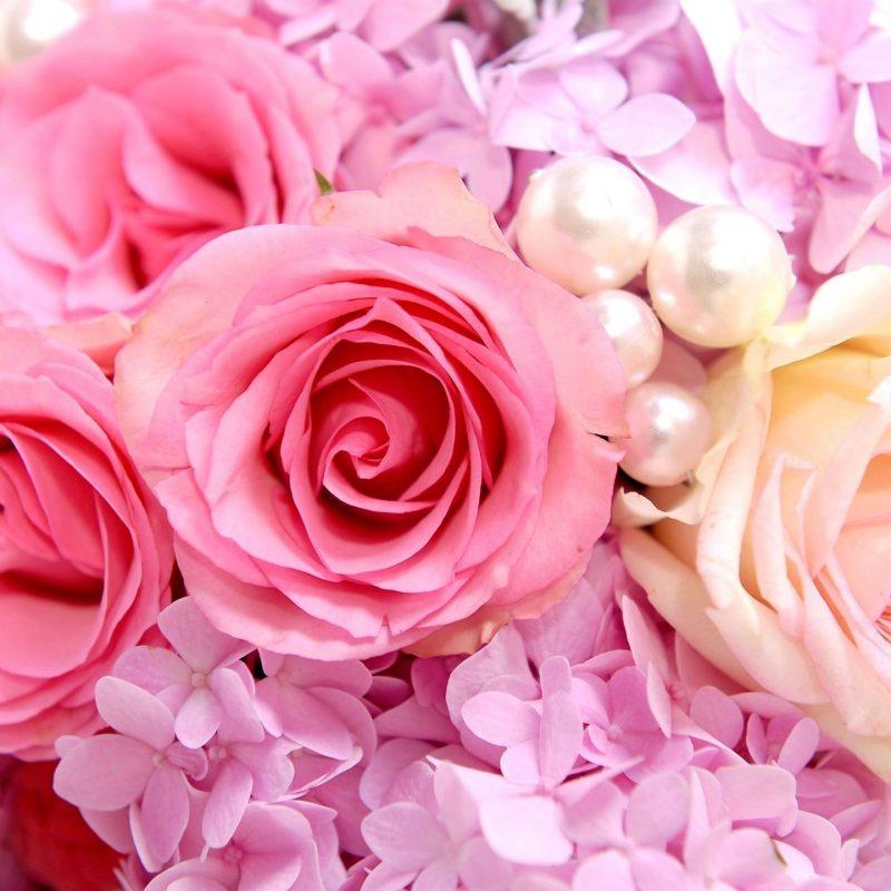 10 Best Pink Rose Background Wallpaper FULL HD 1920×1080 For PC Desktop 2018 free download rose background tumblr wallpaper wallpaper hd background desktop 800x800