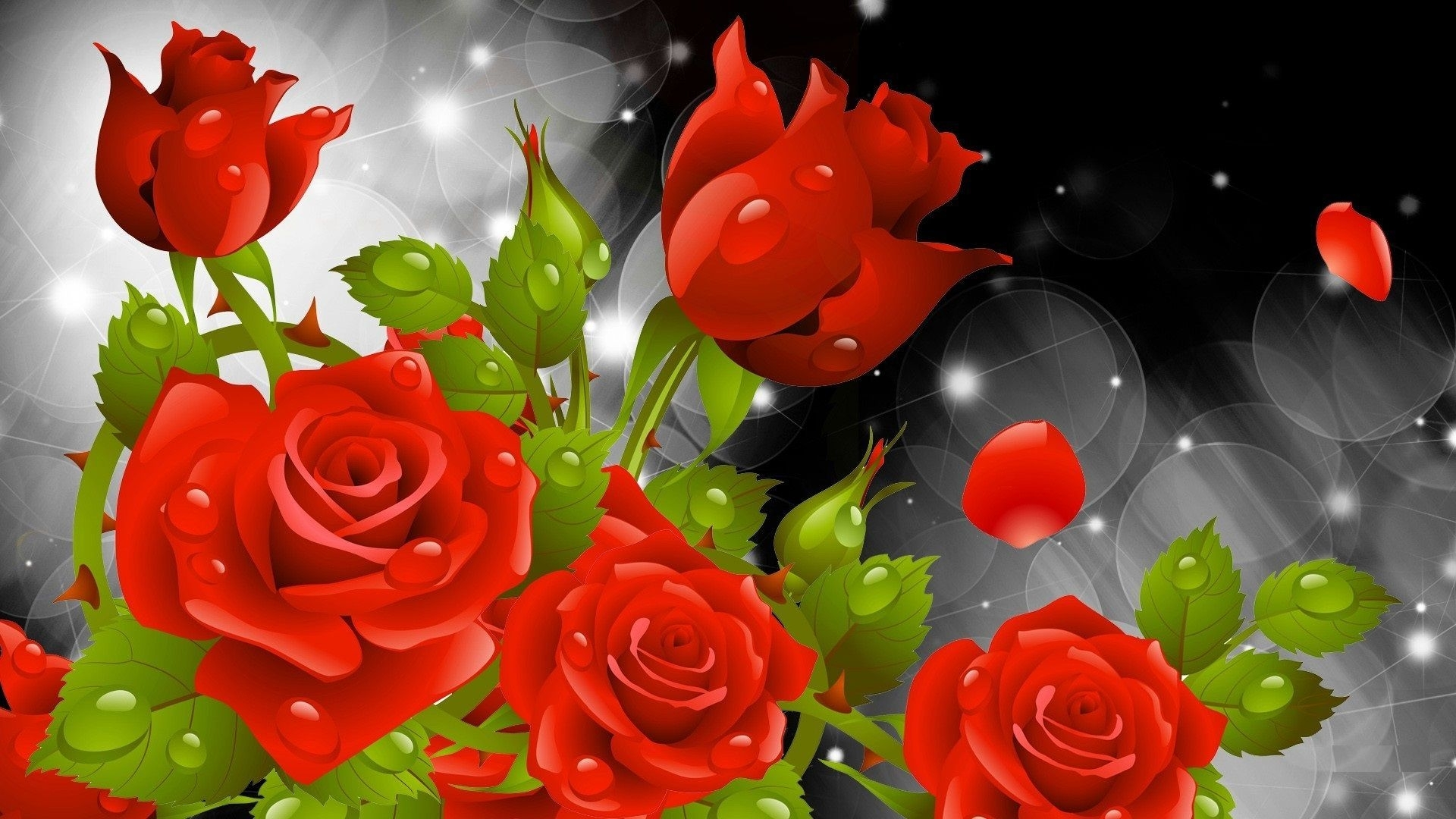 rose flowers hd wallpaper for desktop pics photos roses of androids