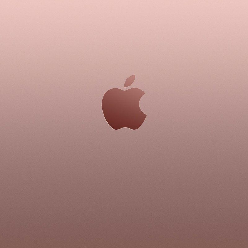 10 Best Iphone Rose Gold Wallpaper FULL HD 1080p For PC Desktop 2018 free download rose gold wallpapers wallpaper cave 800x800