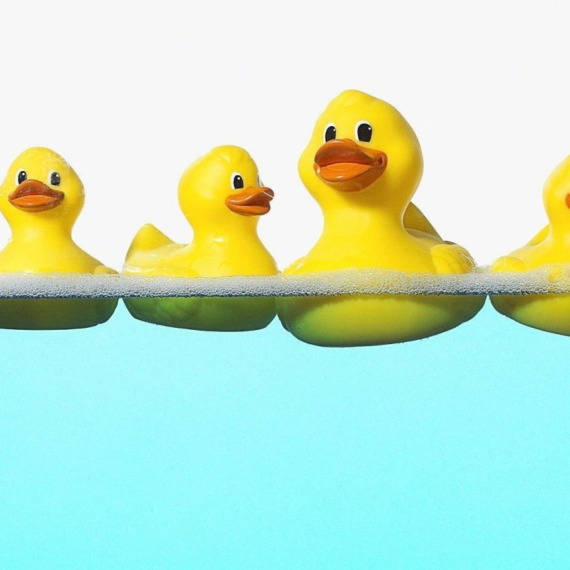 10 Top Rubber Duck Wall Paper FULL HD 1080p For PC Background 2020 free download rubber ducky wallpapers wallpaper cave 800x800