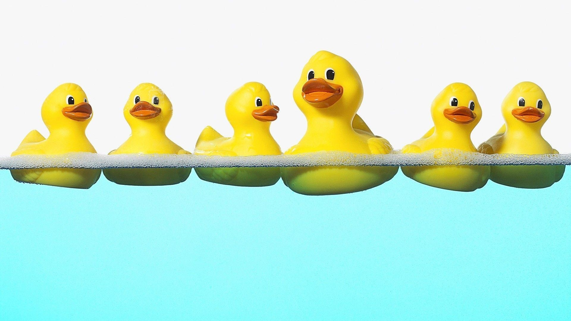 rubber ducky wallpapers - wallpaper cave