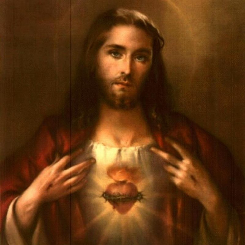 10 Latest Pictures Of The Sacred Heart Of Jesus FULL HD 1080p For PC Desktop 2021 free download sacred heart of jesus devotions 800x800
