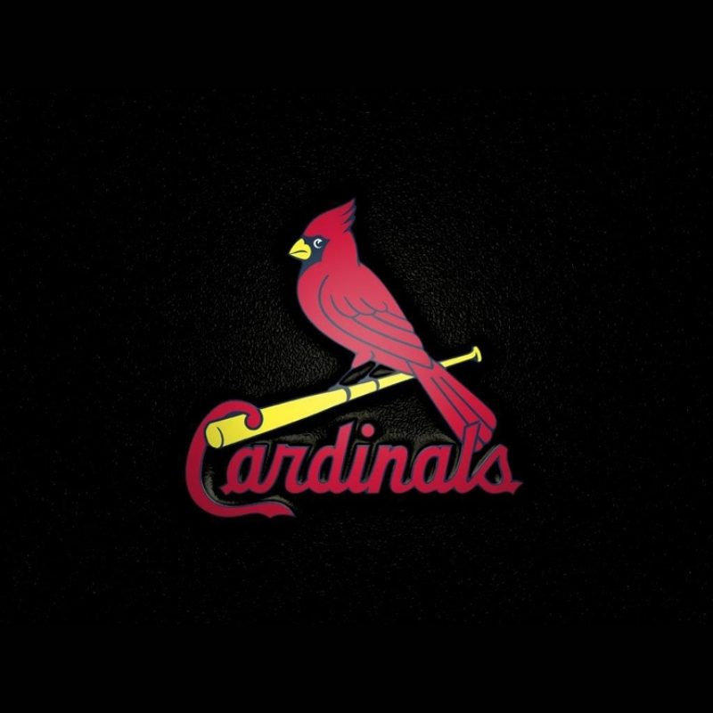 10 Best St Louis Cardinals Logo Wallpaper FULL HD 1080p For PC Desktop 2021 free download saint louis cardinals logo wallpaper 8708470 hejrat 800x800