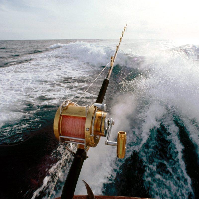 10 New Salt Water Fishing Wallpaper FULL HD 1920×1080 For PC Desktop 2018 free download saltwater fishing wallpaper 1600x1200 800x800