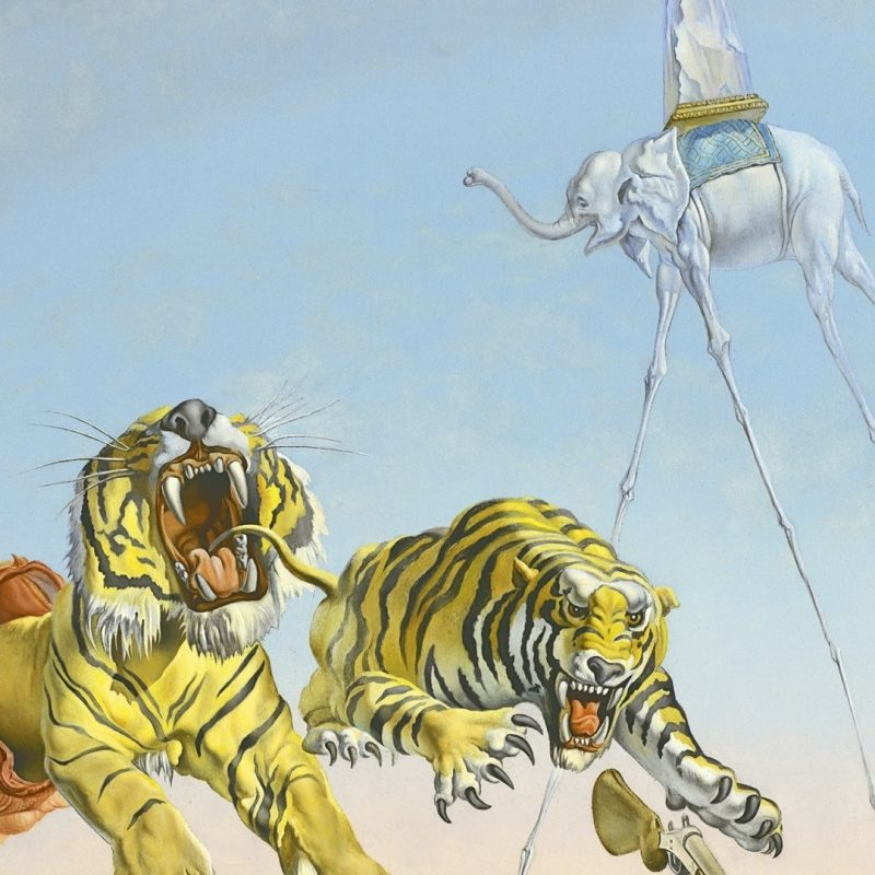 10 New Salvador Dali Wallpaper Tiger FULL HD 1920×1080 For PC Background 2021 free download salvador dali wallpapers 1920x1080 71 xshyfc 800x800