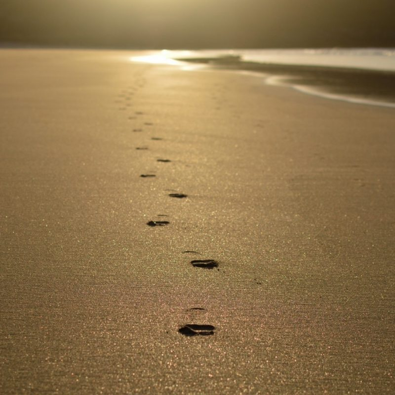 10 Best Footprints In The Sand Images Free FULL HD 1080p For PC Background 2021 free download sand walk in free stock photo public domain pictures 800x800