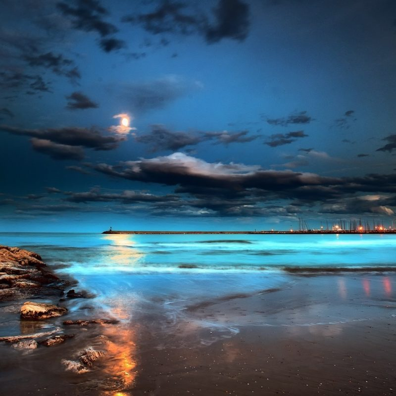 10 New Beach At Night Wallpaper FULL HD 1080p For PC Background 2020 free download sea night moon beach pier lights hd wallpaper 800x800