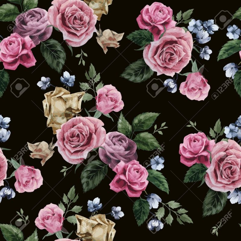 10 Latest Roses On Black Background FULL HD 1080p For PC Background 2020 free download seamless floral pattern with of pink roses on black background 800x800