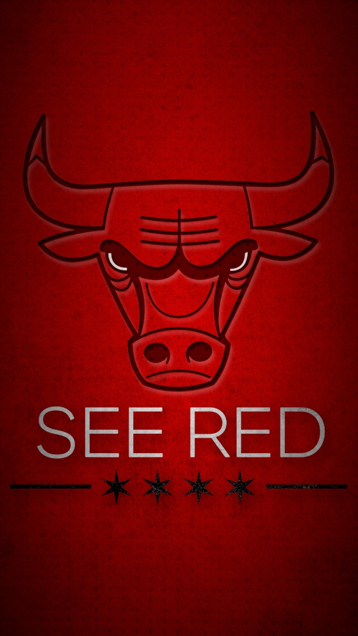 see red | chicago bulls playoffs