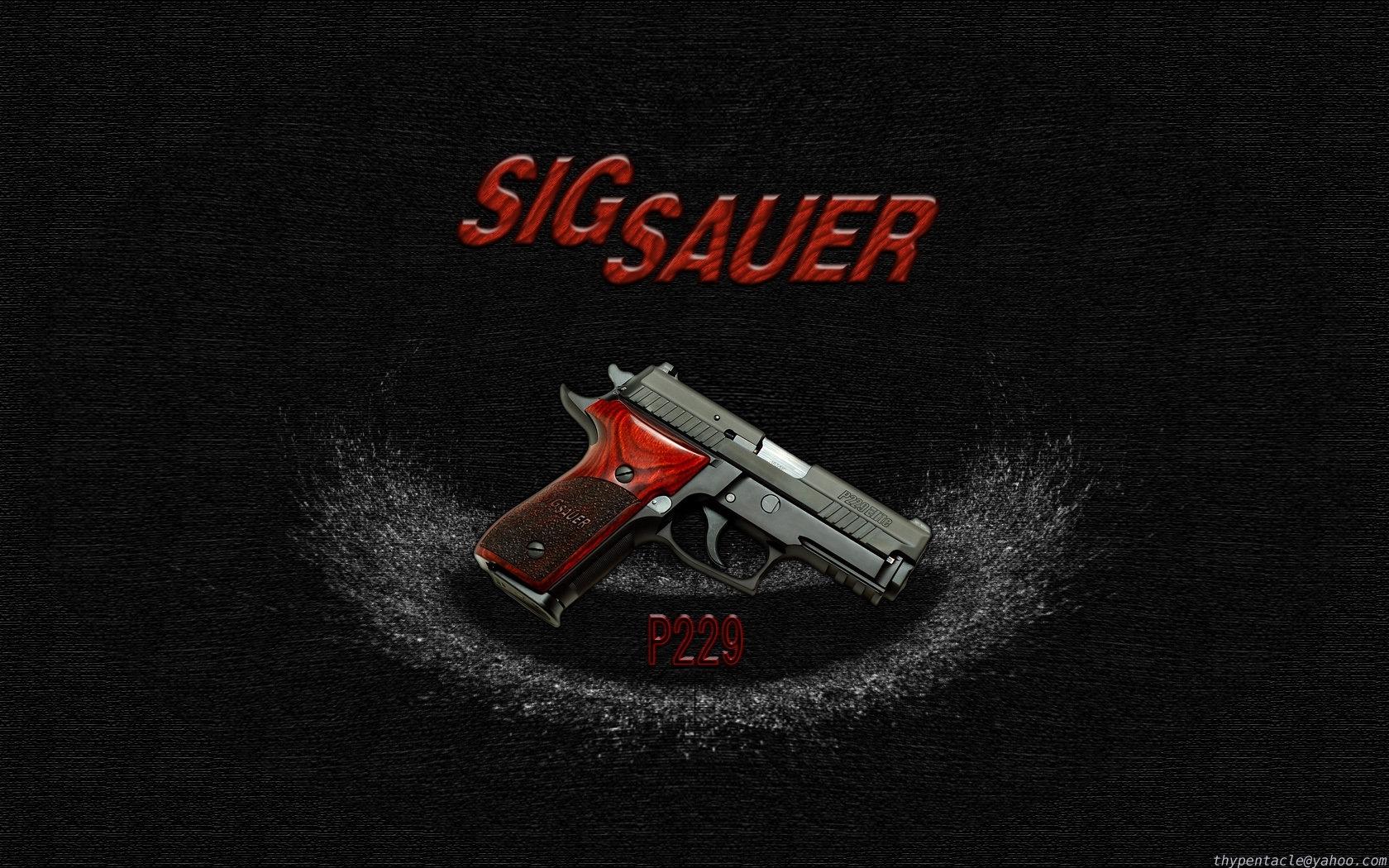 sig sauer p229 elite - widethypentacle on deviantart