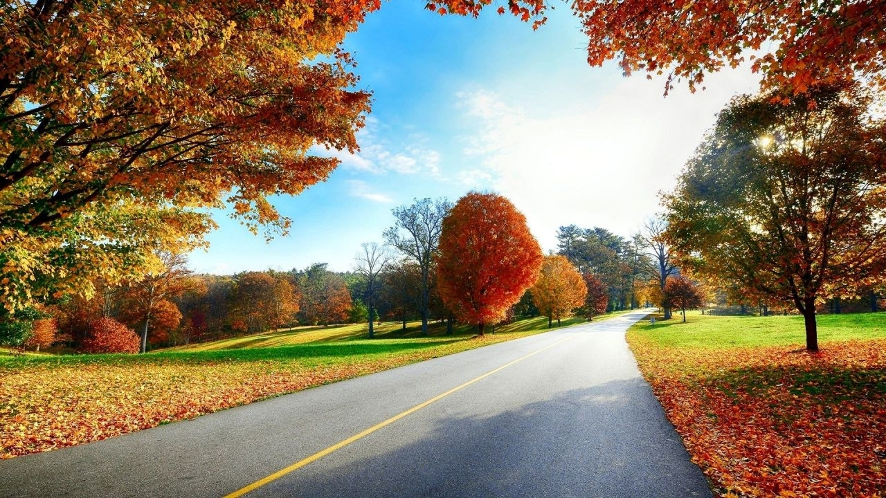 site scene - beautiful-autumn-road-scenery-wallpapers-hd-1080p