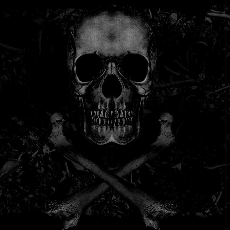 10 Most Popular Skull And Crossbones Wallpaper FULL HD 1920×1080 For PC Desktop 2018 free download skull and crossbones wallpaper clickandseeworld is all about funny 800x800