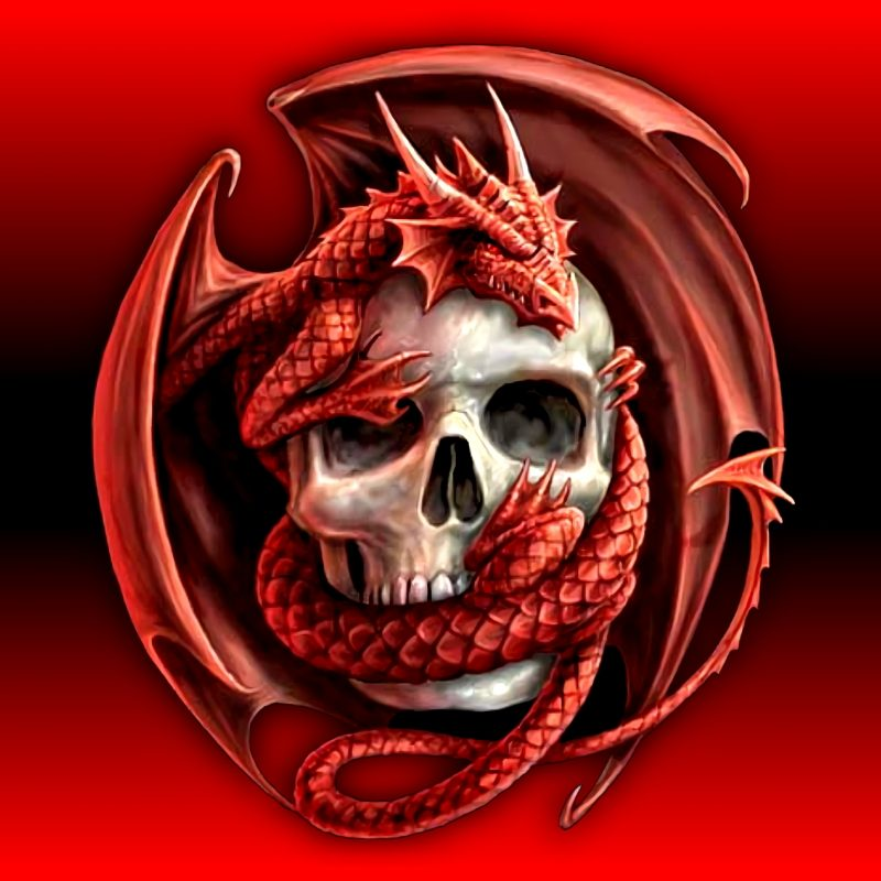 10 Top Red Dragon Hd Wallpaper FULL HD 1920×1080 For PC Desktop 2018 free download skull dragon full hd fond decran and arriere plan 2048x1536 id 800x800