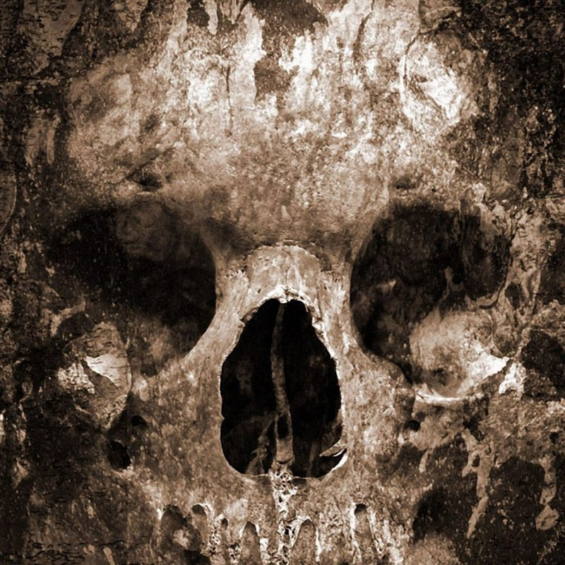 10 Best Skull Wallpaper For Android FULL HD 1080p For PC Background 2018 free download skull wallpaper android 800x800