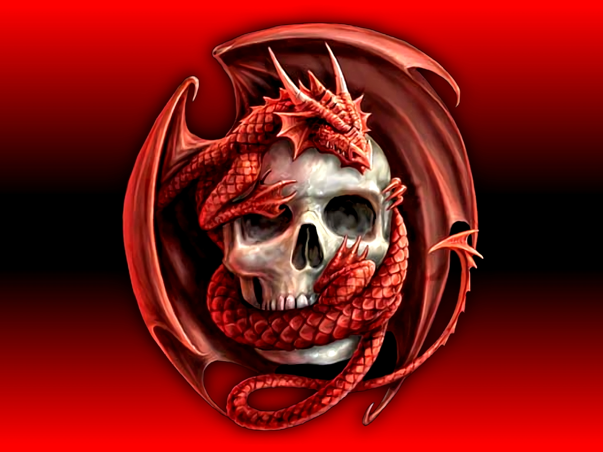 skull wallpapers high quality download free | wallpapers | pinterest