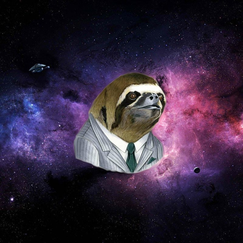 10 Latest Space Sloth Wallpaper FULL HD 1920×1080 For PC Desktop 2018 free download sloth desktop wallpaper wallpapersafari sloths pinterest sloth 800x800