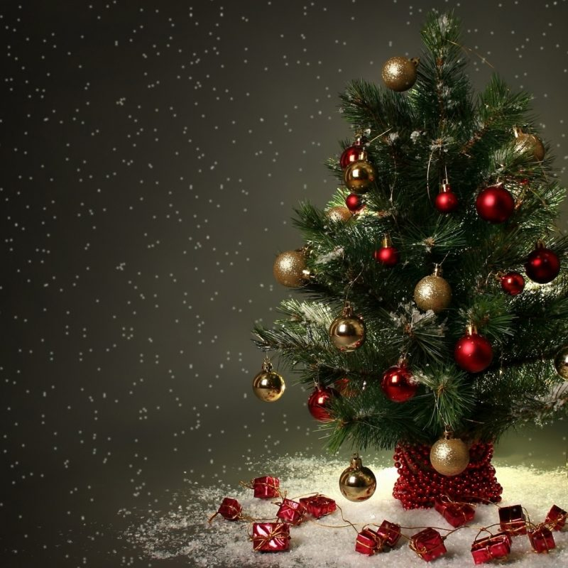 10 New Christmas Tree Wallpaper Hd FULL HD 1080p For PC Background 2021 free download small christmas tree e29da4 4k hd desktop wallpaper for 4k ultra hd tv 2 800x800