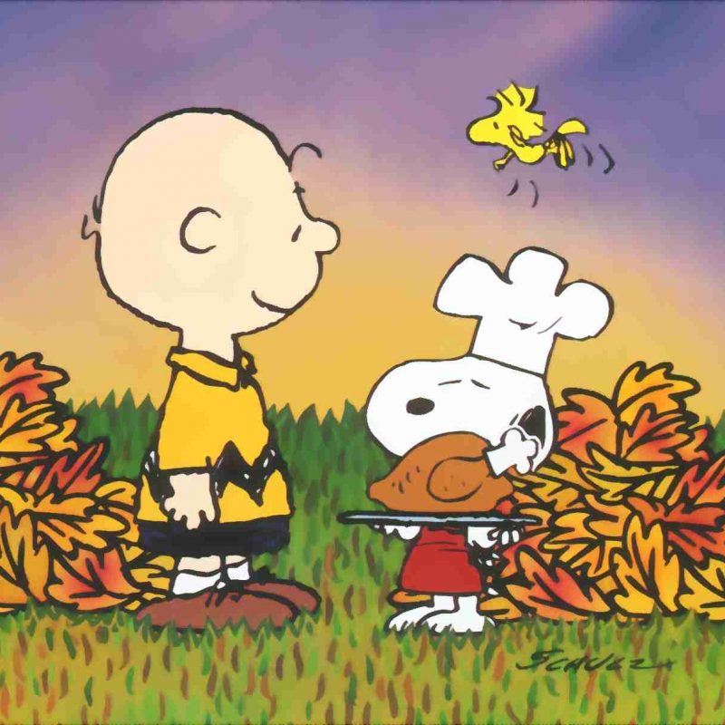 10 New Charlie Brown Thanksgiving Wallpaper FULL HD 1080p For PC Desktop 2018 free download snoopy charlie brown thanksgiving thanksgiving wallpaper 800x800