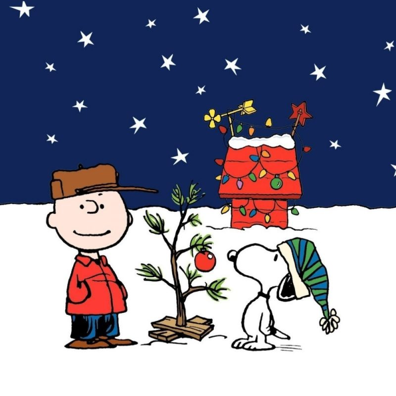 10 Top Snoopy Christmas Wallpaper Free FULL HD 1080p For PC Background 2020 free download snoopy christmas wallpaper c2b7e291a0 800x800