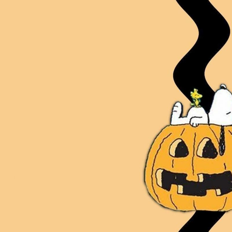 10 Latest Peanuts Halloween Desktop Wallpaper FULL HD 1920×1080 For PC Background 2020 free download snoopy halloween wallpapers wallpaper cave 800x800