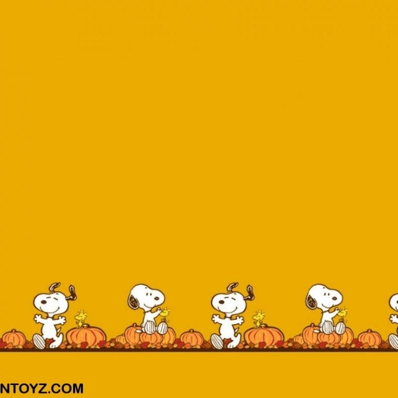 10 Latest Peanuts Halloween Desktop Wallpaper FULL HD 1920×1080 For PC Background 2020 free download snoopy wallpapers picture desktop wallpaper box 800x800