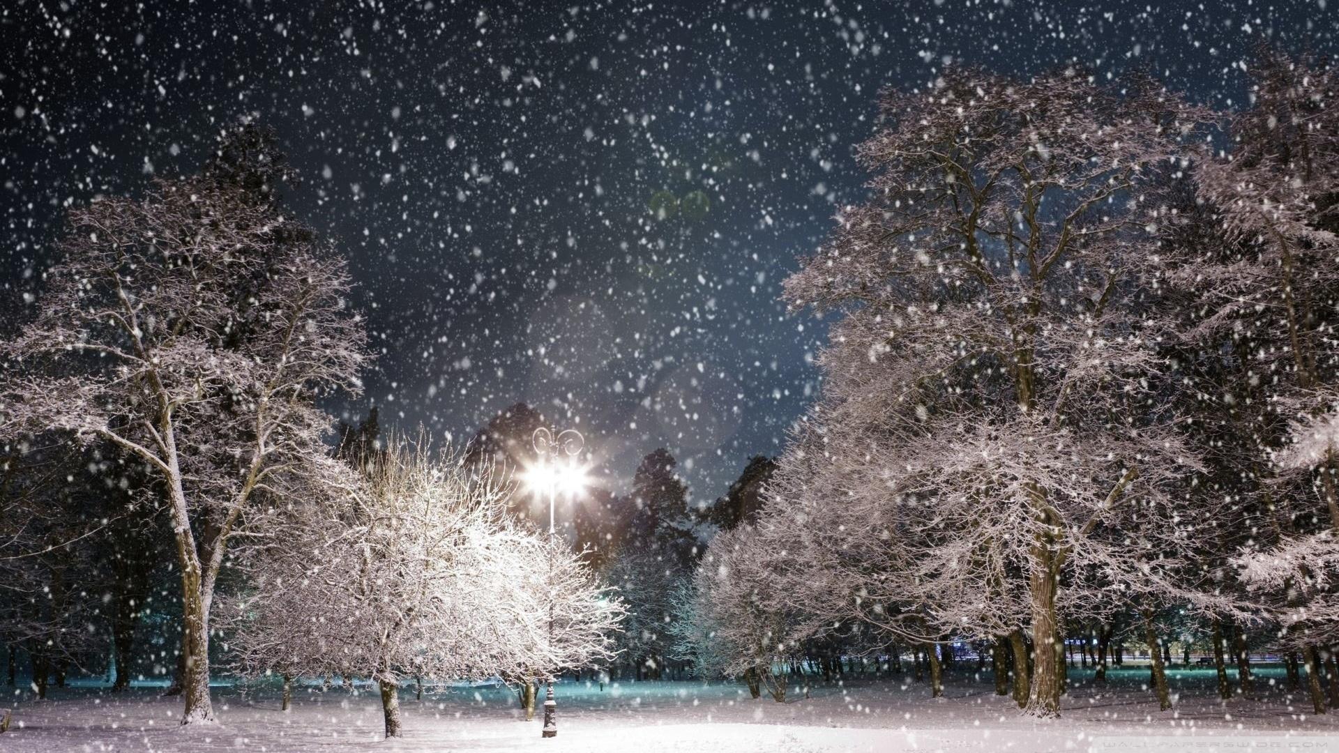 snow at night ❤ 4k hd desktop wallpaper for 4k ultra hd tv • wide