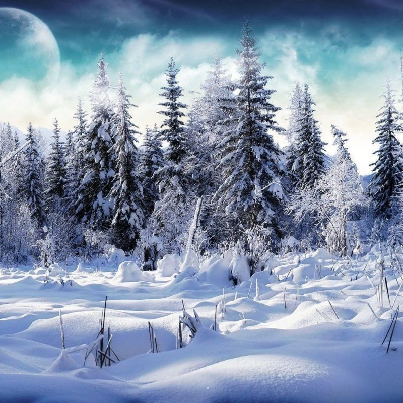 10 Latest Snow Hd Wallpapers 1080P FULL HD 1920×1080 For PC Background 2018 free download snow hd wallpapers wallpaper cave 2 800x800