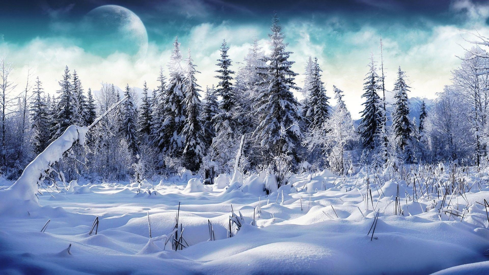 snow hd wallpapers - wallpaper cave