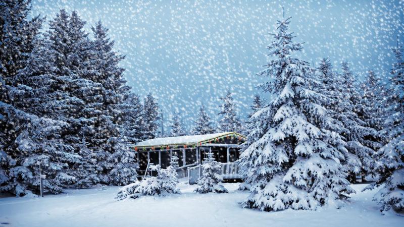 10 Most Popular Snowy Winter Scene Wallpaper FULL HD 1920×1080 For PC Desktop 2021 free download snow winter scene hd wallpaper 1920x1080 id22862 800x450