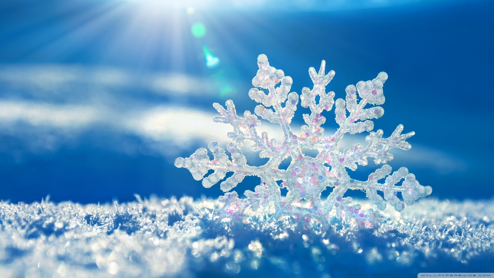snowflake ❤ 4k hd desktop wallpaper for 4k ultra hd tv • wide