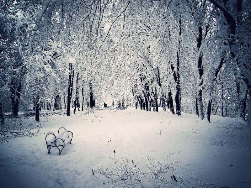 10 Most Popular Snowy Winter Scene Wallpaper FULL HD 1920×1080 For PC Desktop 2021 free download snowy winter scenes wallpaper wallpapersafari 800x600
