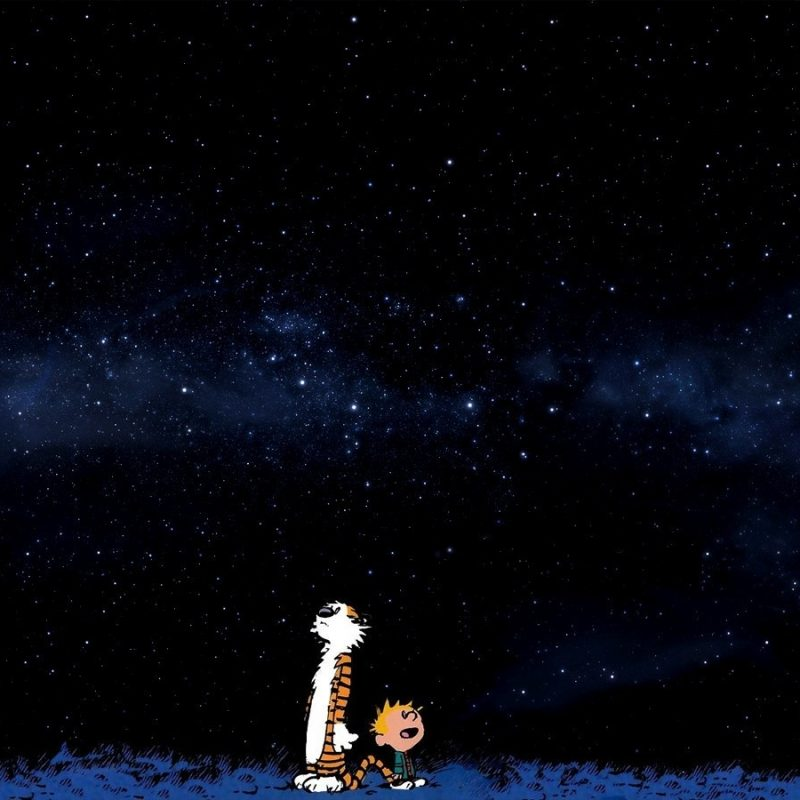 10 Best Calvin And Hobbes Desktop FULL HD 1080p For PC Desktop 2020 free download space stars blue comics calvin and hobbes wallpapers hd 800x800
