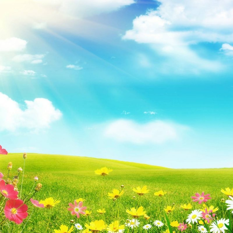 10 New Spring Background Images Free FULL HD 1920×1080 For PC Desktop 2018 free download spring backgrounds free wallpaper cave 800x800