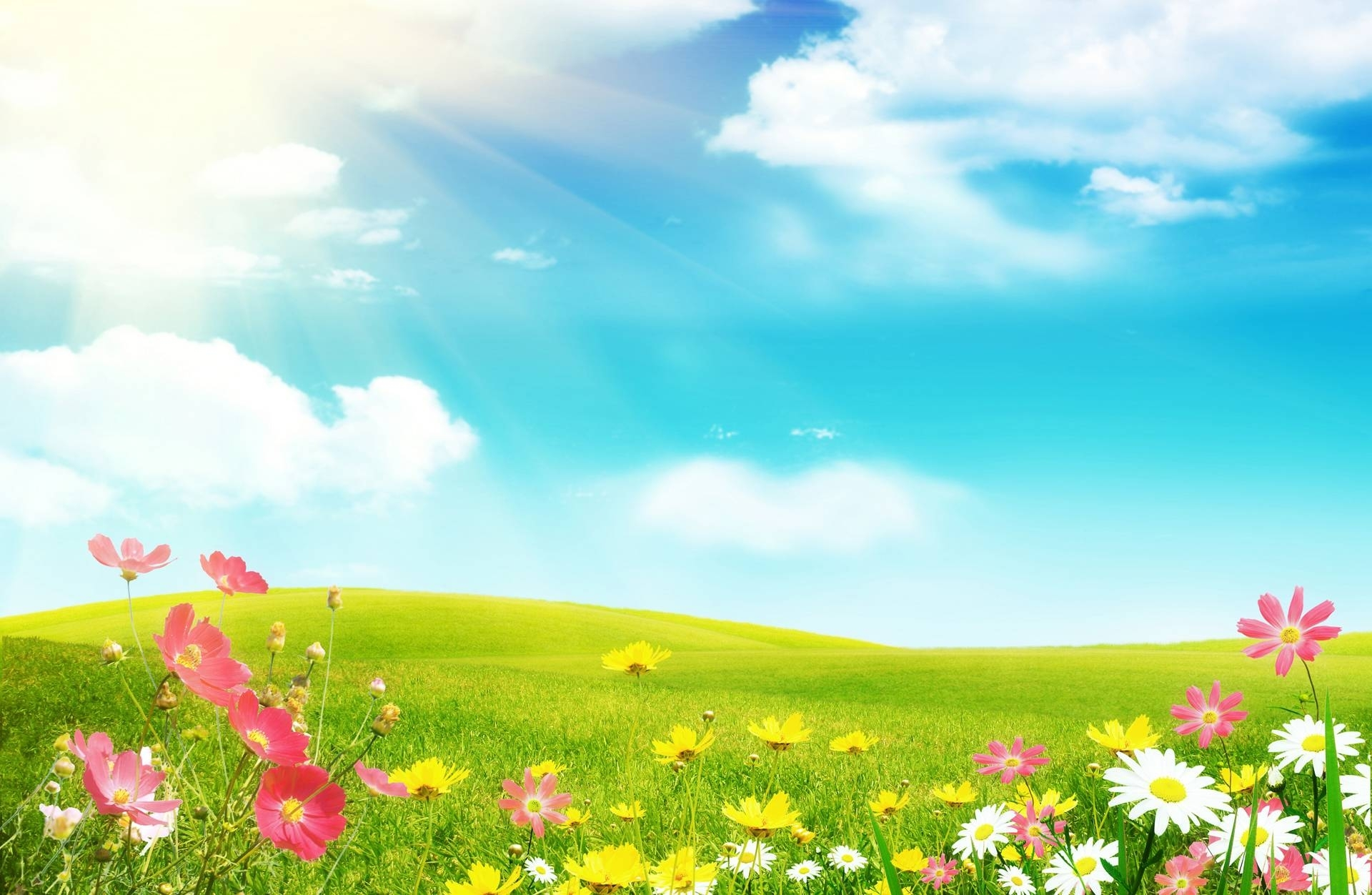 10 New Spring Background Images Free FULL HD 1920×1080 For PC Desktop