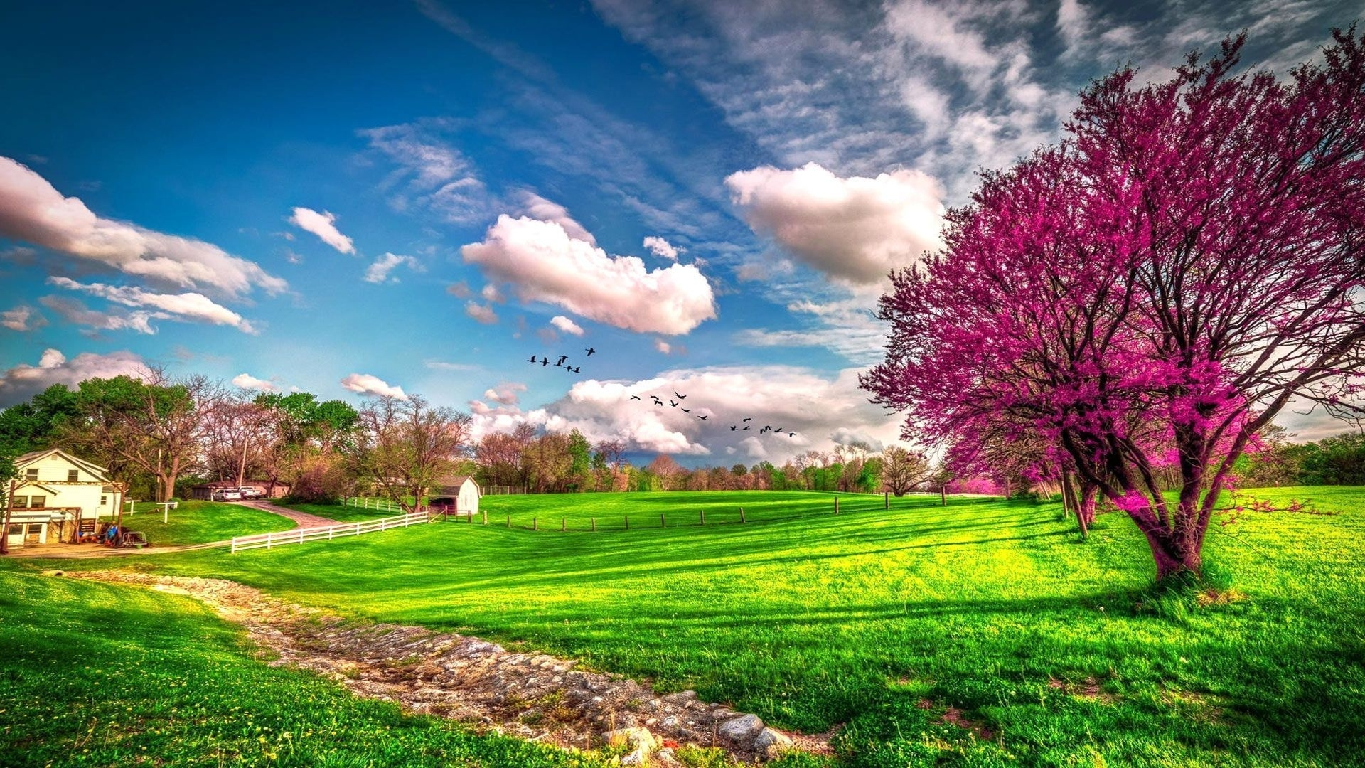 spring scenery wallpapers group (71+)