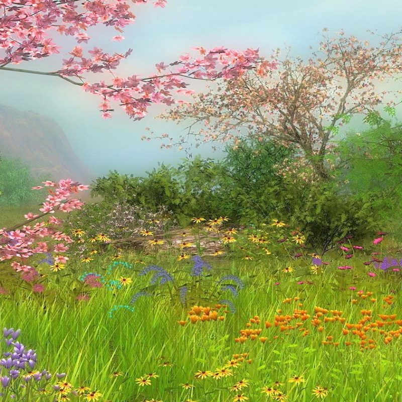 10 Best Spring Scenery Wallpaper Widescreen FULL HD 1080p For PC Background 2021 free download spring scenes wallpaper 42 images 800x800