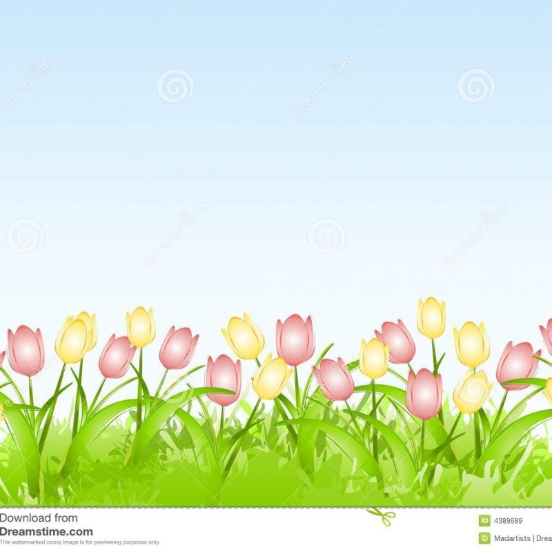 10 New Spring Background Images Free FULL HD 1920×1080 For PC Desktop 2021 free download spring tulips flower border background stock image image of floral 800x800