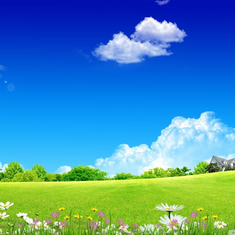 10 Top Background Images Nature Spring FULL HD 1080p For PC Background 2018 free download spring wallpapers best wallpapers 1 800x800