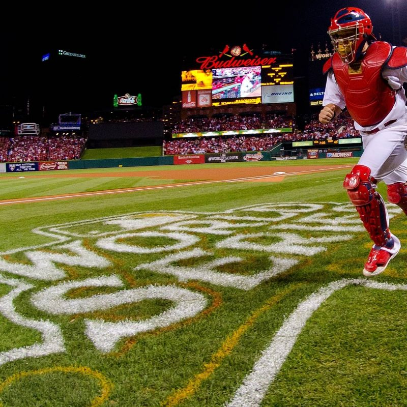 10 New St Louis Cardinals Wallpaper FULL HD 1080p For PC Background 2020 free download st louis cardinals desktop wallpapers wallpaper cave 3 800x800