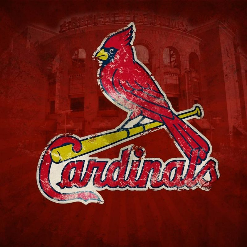 10 Best St Louis Cardinals Logo Wallpaper FULL HD 1080p For PC Desktop 2021 free download st louis cardinals desktop wallpapers wallpaper cave 8 800x800
