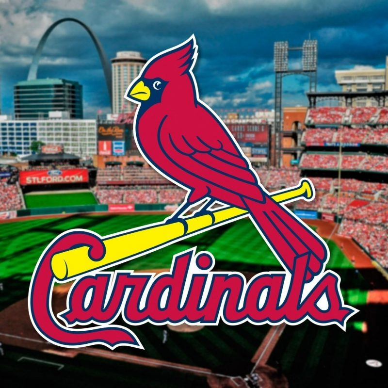 10 Best St Louis Cardinals Logo Wallpaper FULL HD 1080p For PC Desktop 2021 free download st louis cardinals iphone wallpaper 60 images 800x800